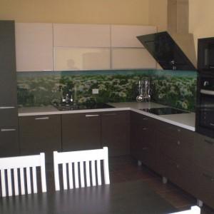 Virtuvė 8